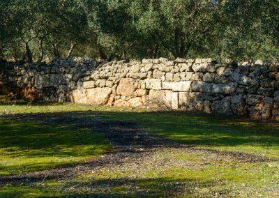 Ruderi villa romana