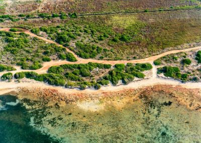 Sentiero tra le dune