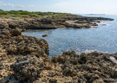 Scogliera bassa di fronte all'isola